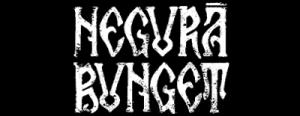 negura-bunget-4f86738c7ae61