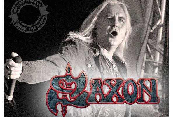 saxon-8-copia
